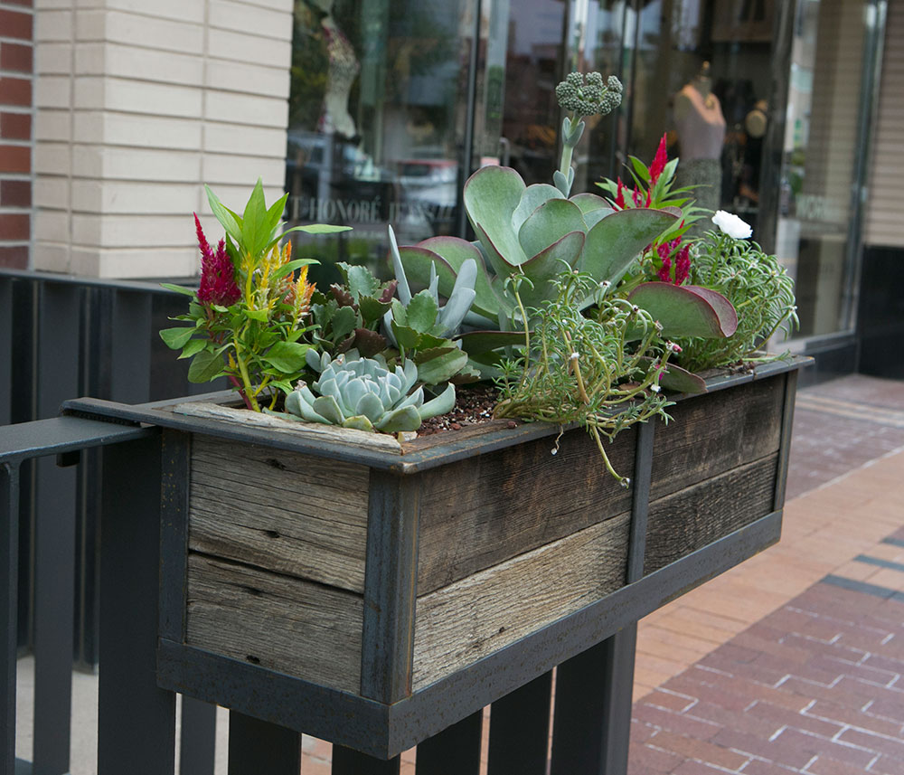 Hanging Steel Frame Planter With Cedar Wood Insert